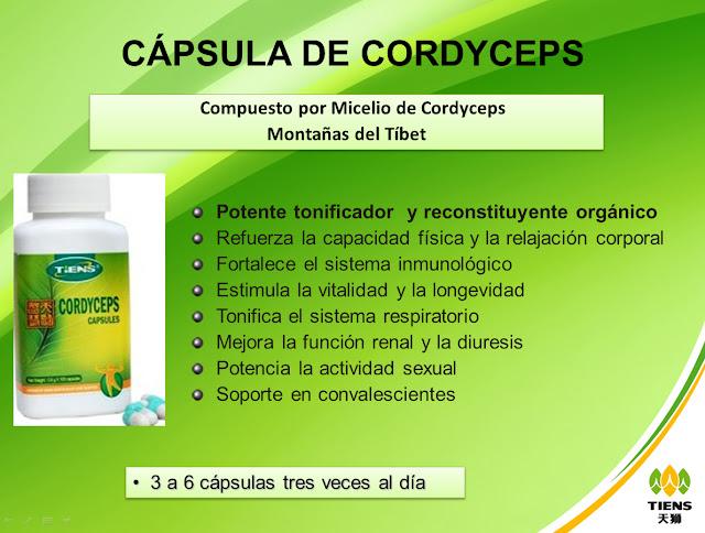 http://1.bp.blogspot.com/-Y5989R2u_so/TzLw9mOLEKI/AAAAAAAAIUU/R665h1KAM_Y/s640/Micelio+cordyceps+tiens+colombia.bmp
