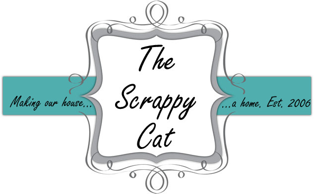 The Scrappy Cat