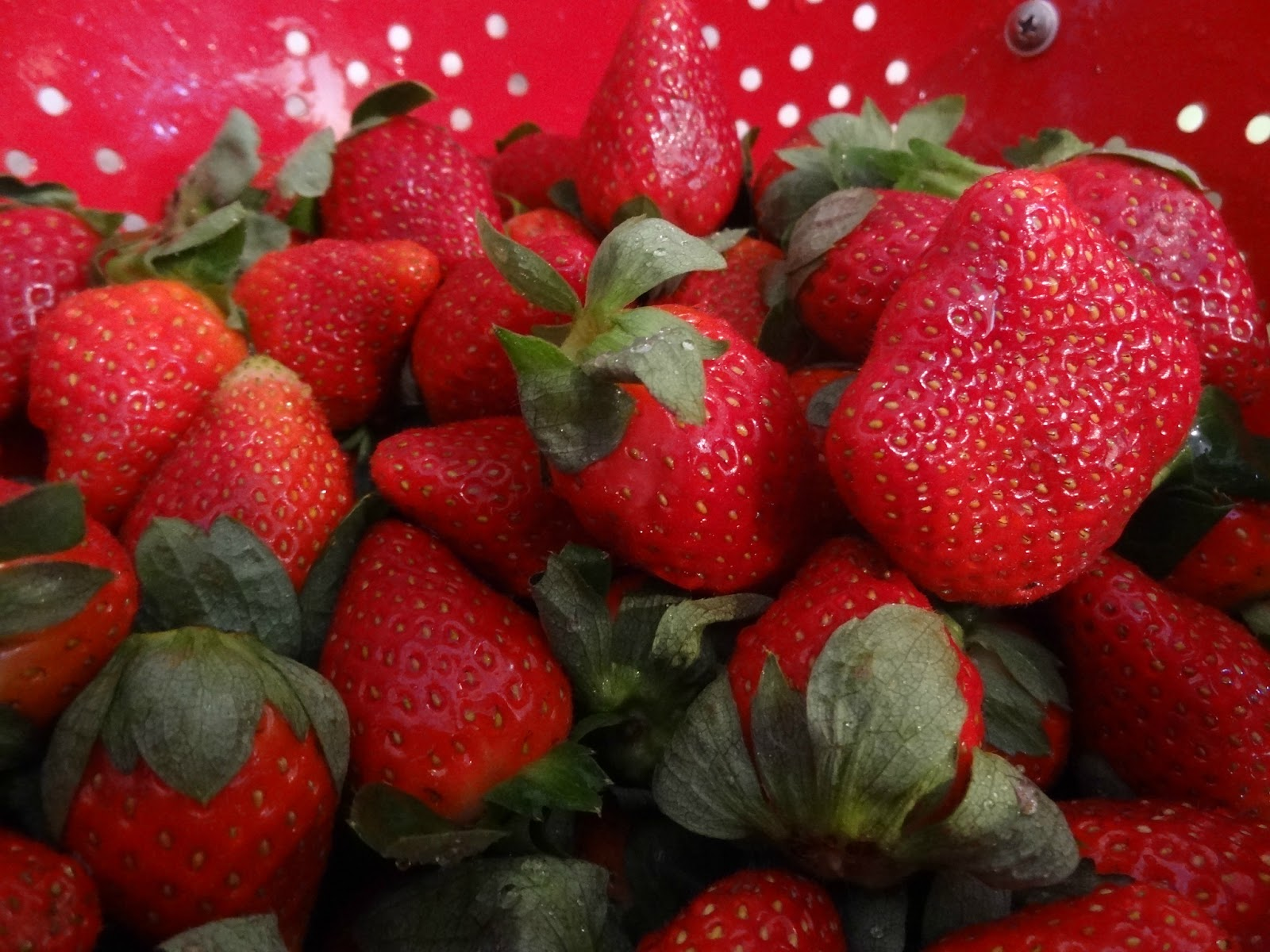 how to get rid of mock strawberry