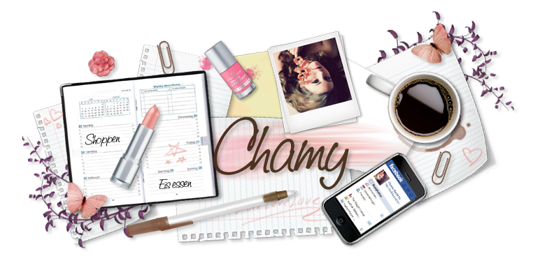 Chamy&#39;s Diary
