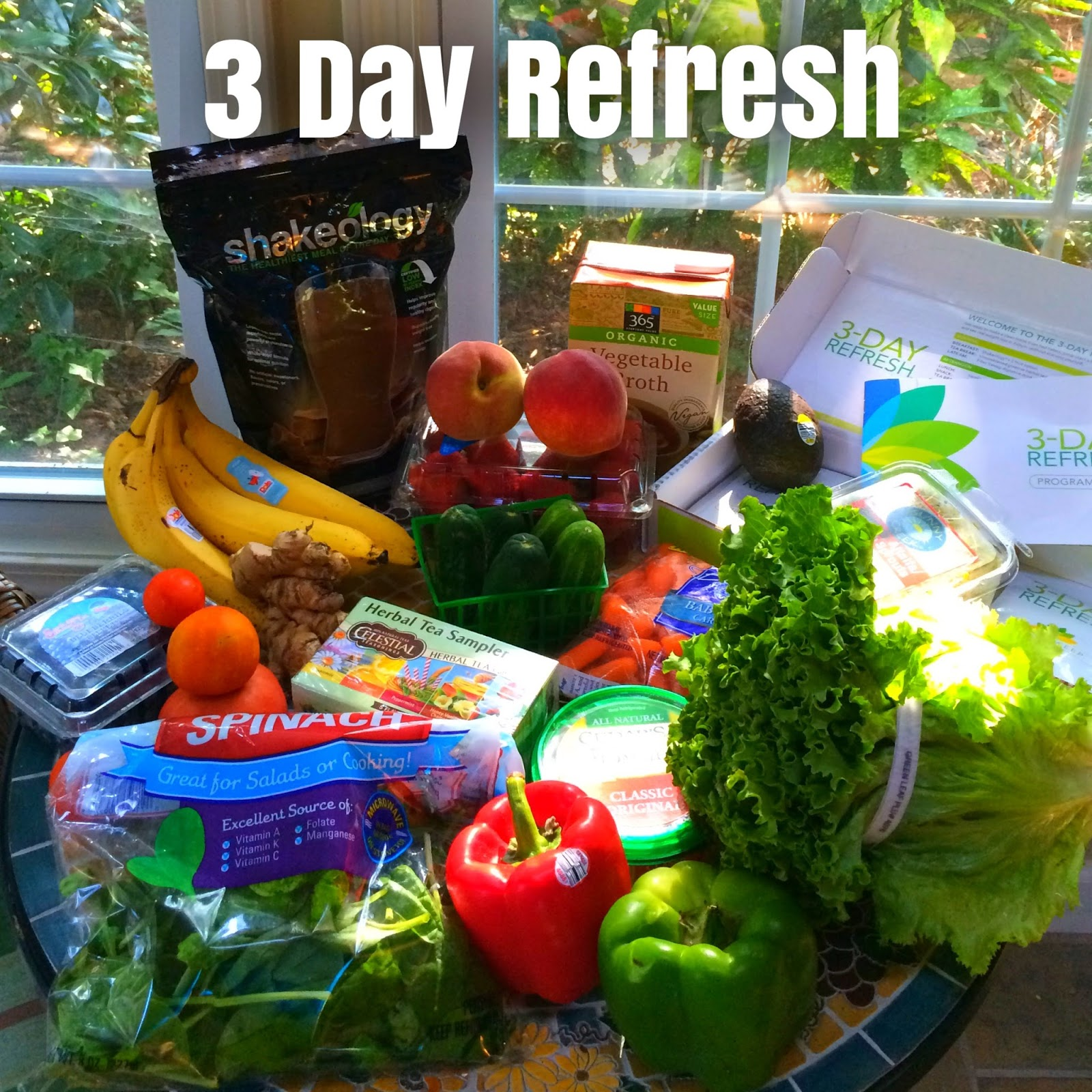 Fit Fierce Fight My 3 Day Refresh Review Day 1