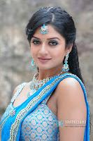 vimla raman, actress photos, hot and sexy, Hot Saree Stills, hot in tamil actress photos,