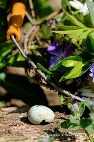 Gartenlust oder Gartenfrust