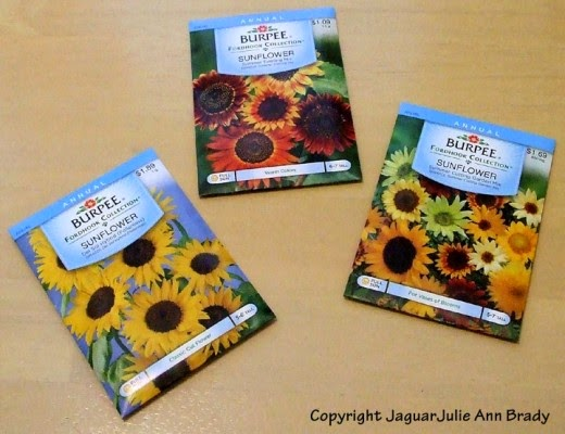 burpee sunflower seeds 3 packets