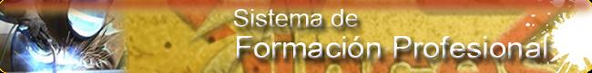 SISTEMA DE FORMACION PROFESIONAL INCES