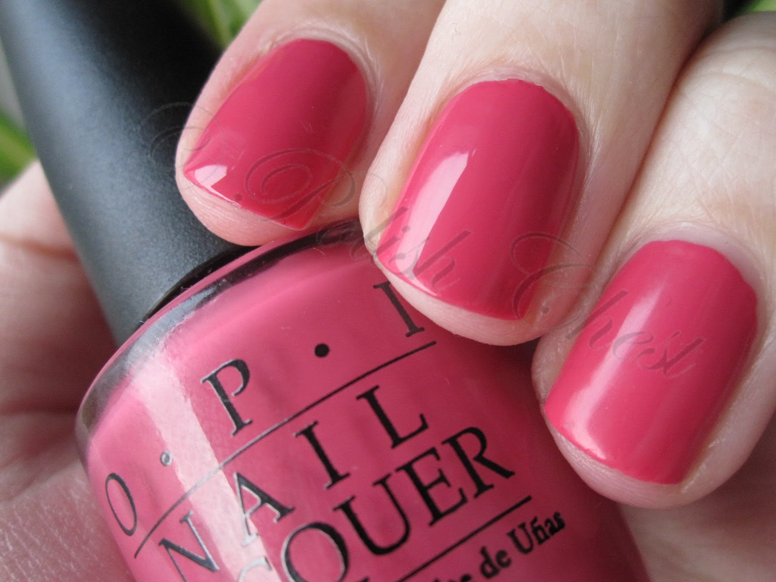 Polish Chest: OPI - Party in My Cabana