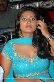 , Sneha Hot Pics In Sari