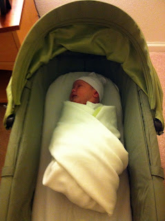 Freddie in his bassinet