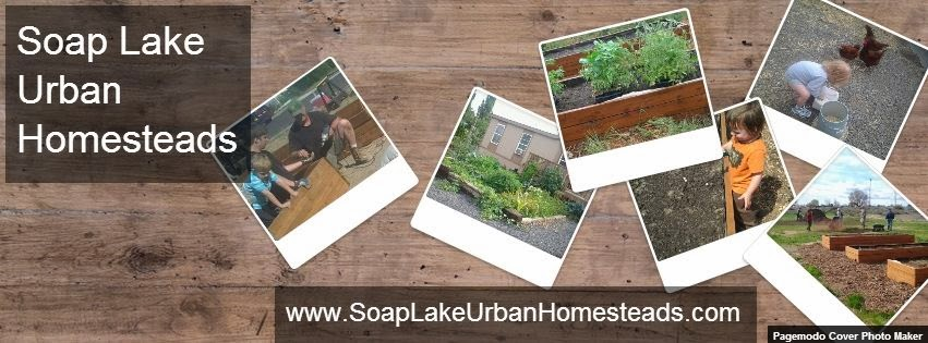Soap Lake Urban Homesteads