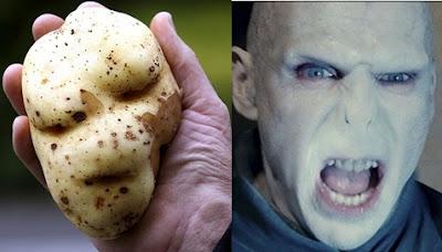 明星臉 佛地魔 馬鈴薯(有明星臉佛地魔的馬鈴薯)