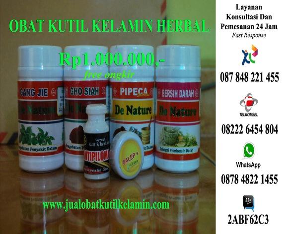 Jual Obat Herbal Untuk Kutil Kelamin