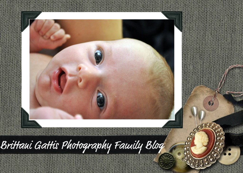 Brittani Gattis Photography Family Page