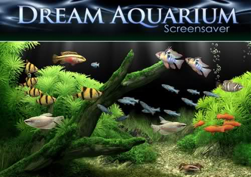 Dream Aquarium 1.2413 Screensaver