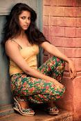 Shravya Reddy Glamorous Portfolio Photo Shoot-thumbnail-4