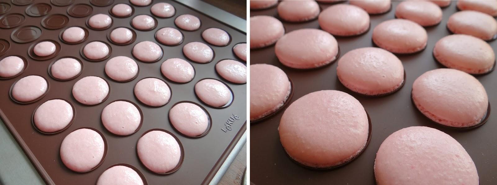 Macarons Silicon Mat, Macarons Baking Kit, Lekue Decomax