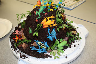 "The finished ""Frog Cake"""