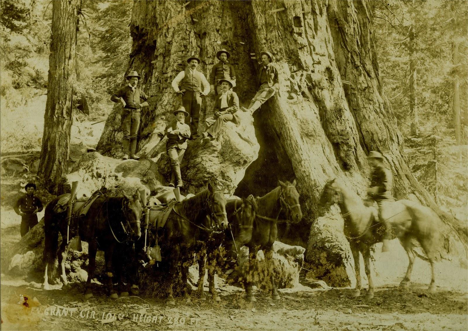 ... cavalrymen.... R C Moore Lumber Company