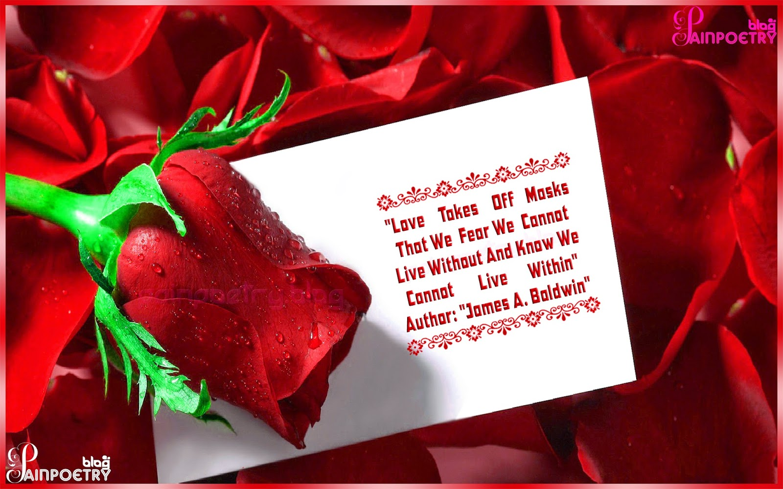 Love-Greeting-Quote-For-Lovers-With-A-Rose-Image-Wallpaper-HD