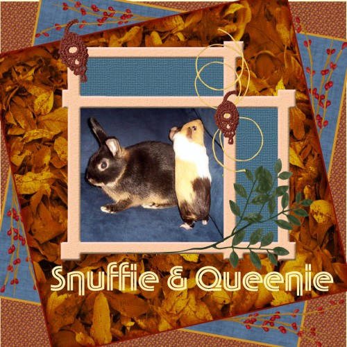 Oct. 2016 - Snuffie and Queenie