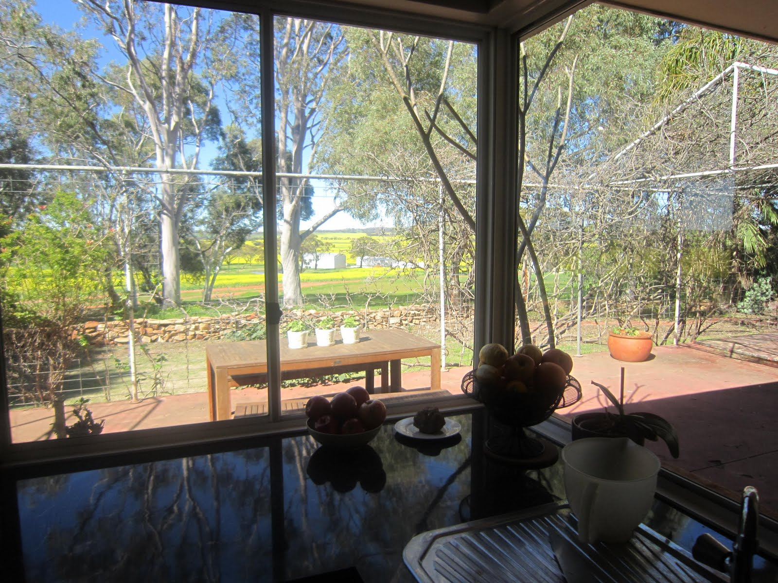 Life In The Country...: The View From My Kitchen Sink - Unstyled!