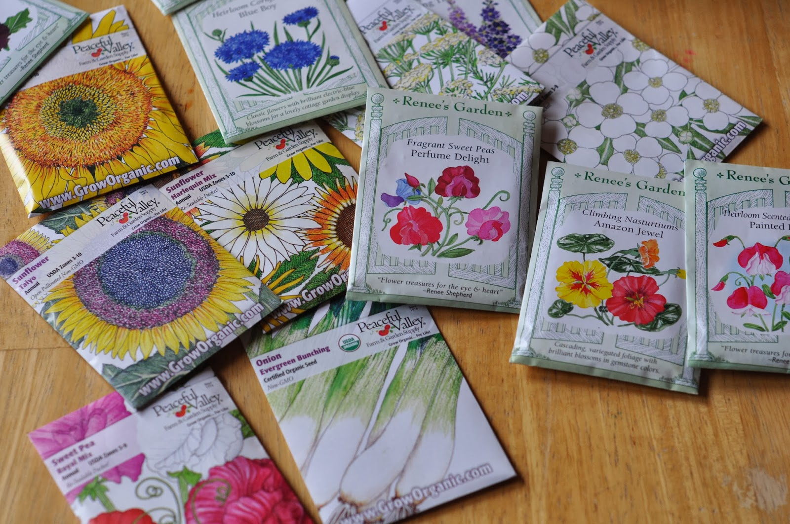 flower seeds, flowers, portland gardening, portland oregon blogger
