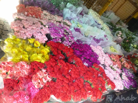 Beautiful flowers in Dangwa