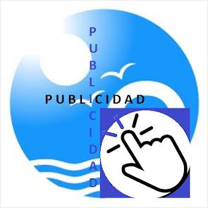 PUBLICIDAD EN LA WEB