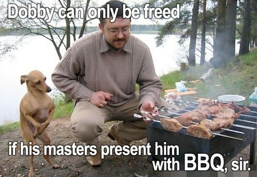 Dobby Can Only Be Freed, If His Masters Present Him With BBQ, Sir