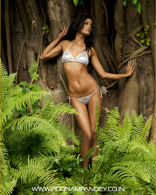 Poonam Pandey Hot Wallpapers High Quality