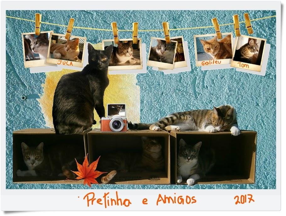 Pretinha & Amigos