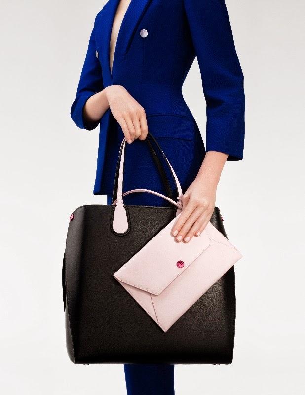 dior+addict+bag