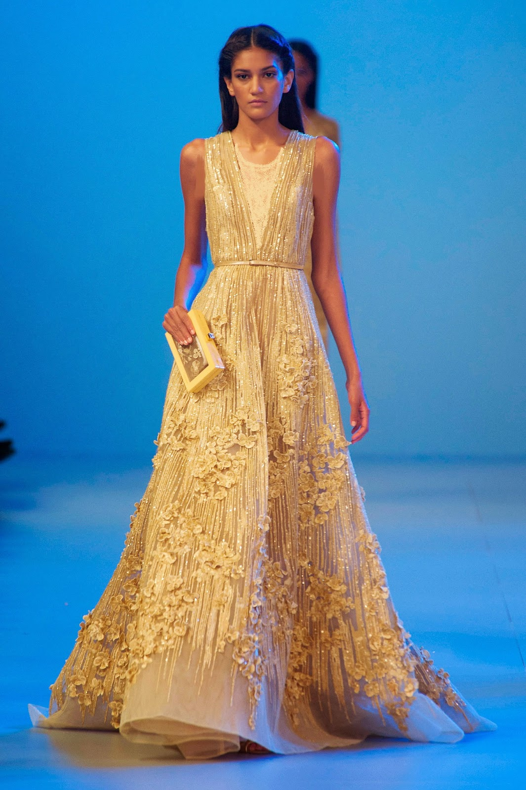Elie saab haute couture spring collection 2014 pakistani for Modern haute couture