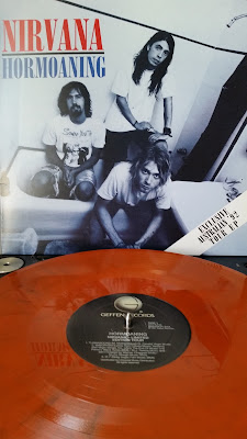 Wax Digger Reviews, Album, Disque, Vinyle, Vinyl, picture, Pochette photo, pics, Cover, instagram, image, Grunge, Cobain, Australie, Australia, Grohl