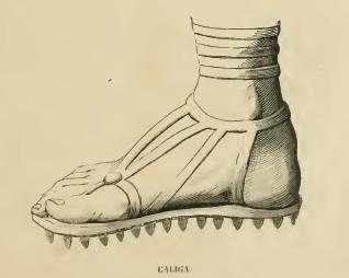Historia del zapato. Caliga