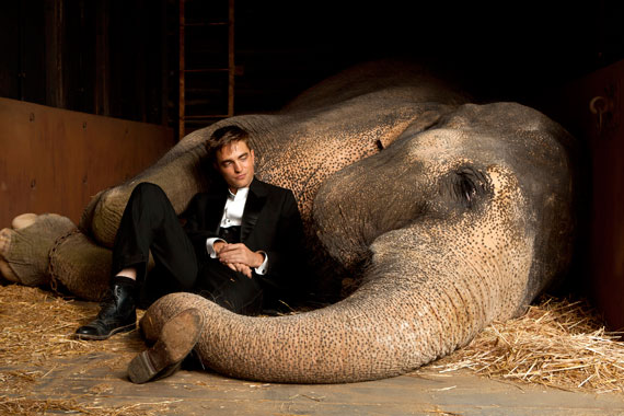 Water for Elephants, Photograph