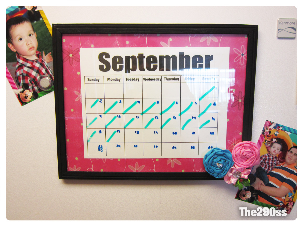 Diy Refrigerator Calendar : The ss diy fridge calendar