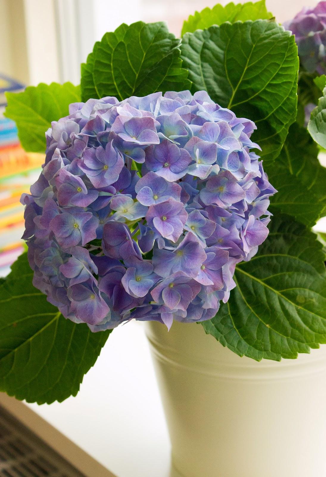 цветы с ленточек фото