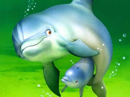 imágenes de delfines