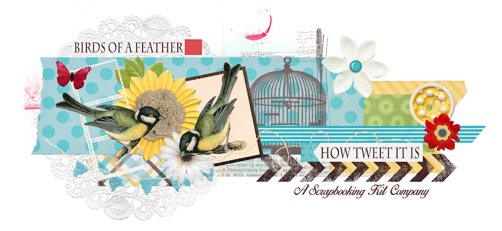 Birds of a Feather Kit Co.