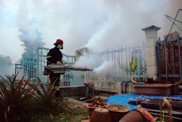 Dengue cases expected to rise