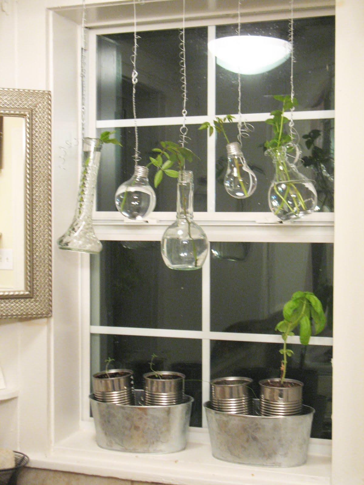 Kitchen garden windows lowes viewing gallery