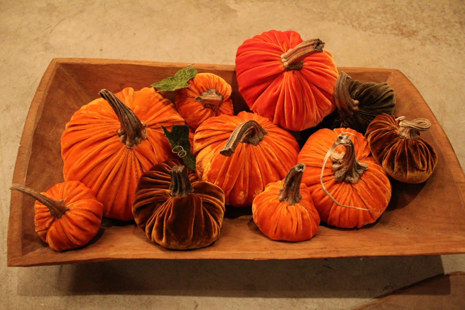 autumn lagniappe  silk velvet pumpkins