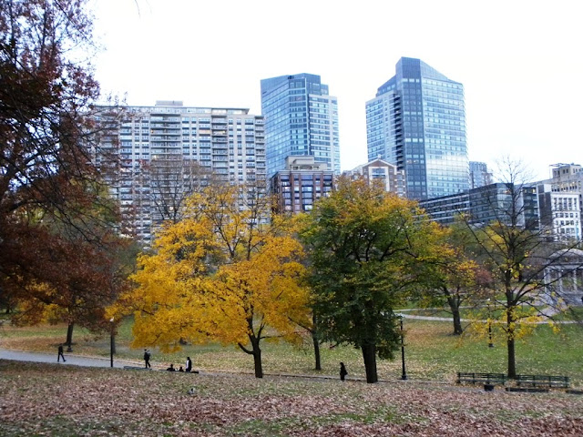 Fall in Boston