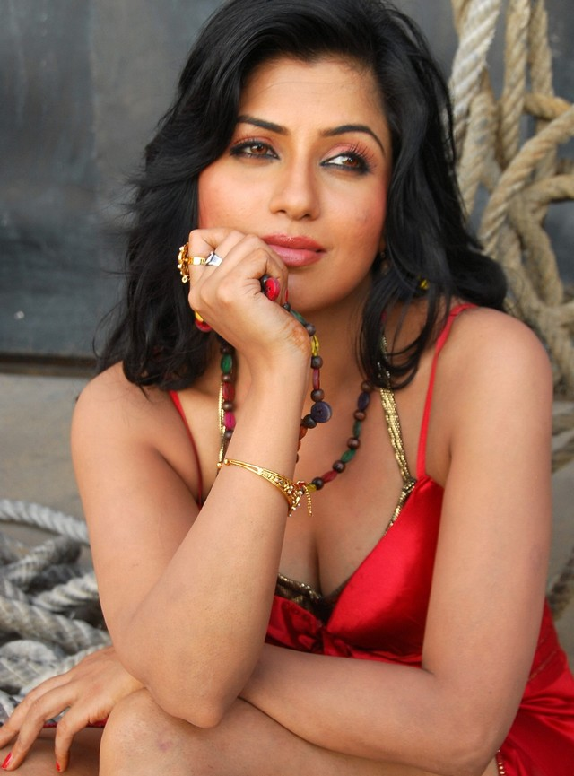 hot south indian and bollywood actress hot navel and