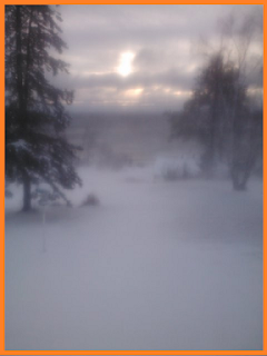 Lake view through the trees, obscured by a cloud of snow blowing through the air.