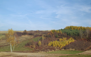 http://fotobabij.blogspot.com/2015/11/roztocze-lasek-na-zboczu-pazdziernik.html
