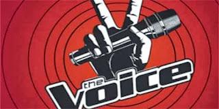 The voice  -  ΑΝΤ1