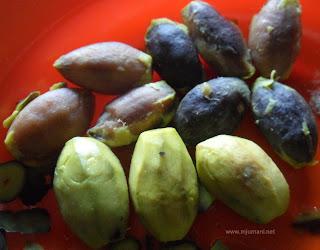 buah khas kalimantan