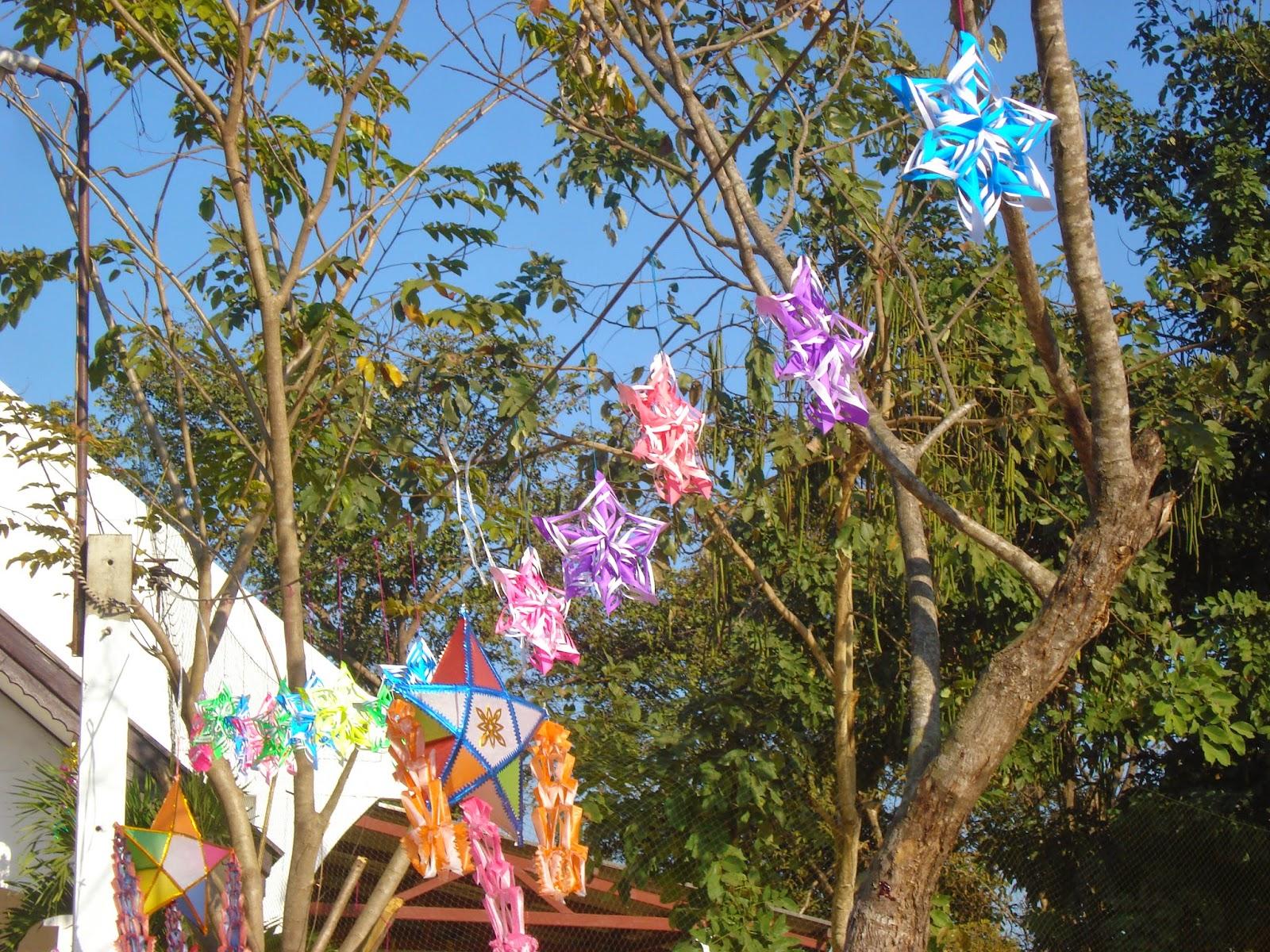 Estrellas en los árboles