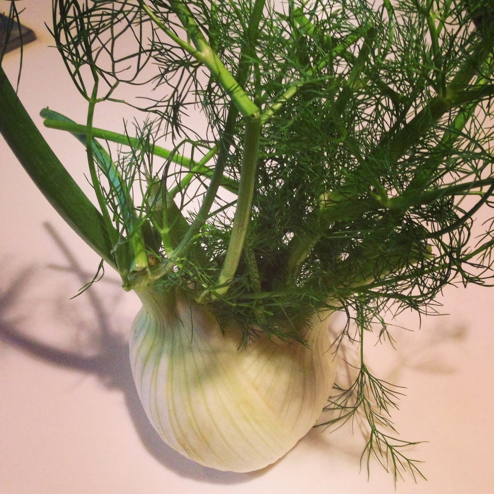 tips for cooking and eating fennel